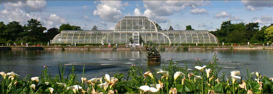 Richmond To Kew Gardens By Bus: Local Attractions In Kew And Richmond